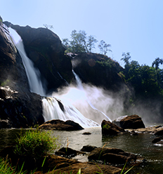 ATHIRAPPILLY WATERFALLS' S IMAGE